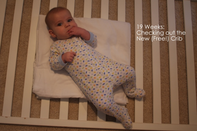 19 weeks checking out the new free crib