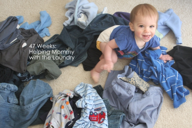 47 weeks helping mommy with the laundry