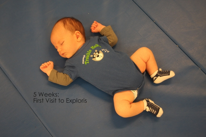 5 weeks first visit to exploris
