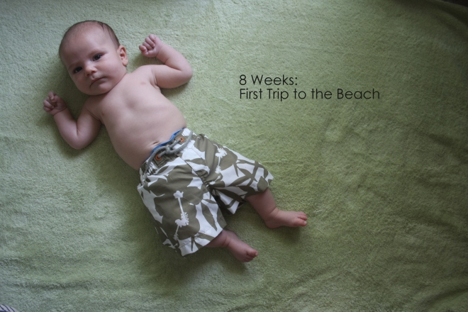 8 weeks first trip to the beach